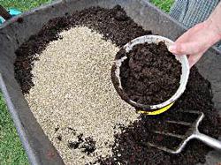 Как сажать растения